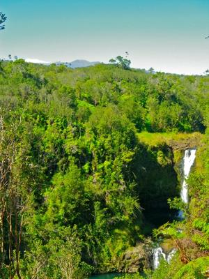 Zipline Adventure & Hilo Waterfall Pool Swim Option