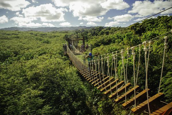 Zipline On North Shore Oahu Bridge
