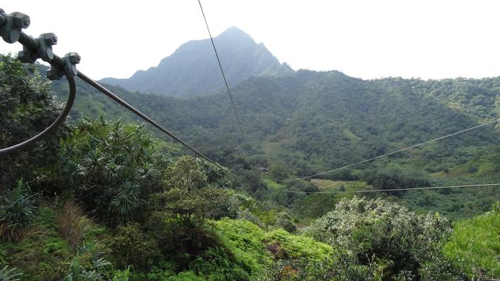 Jurassic Valley Zipline Adventure