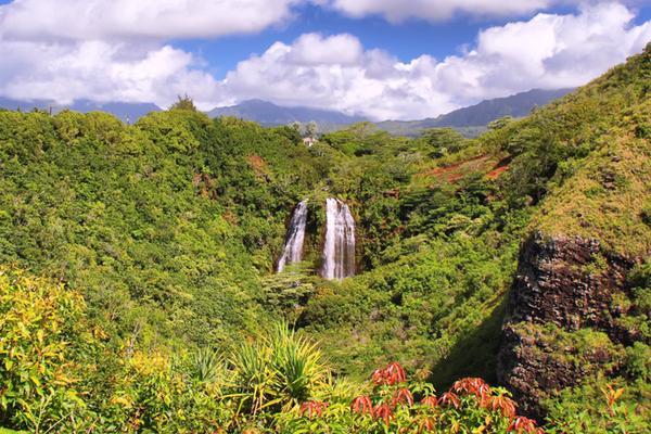 Kauai Movie & TV Tour to Scenic Hanalei
