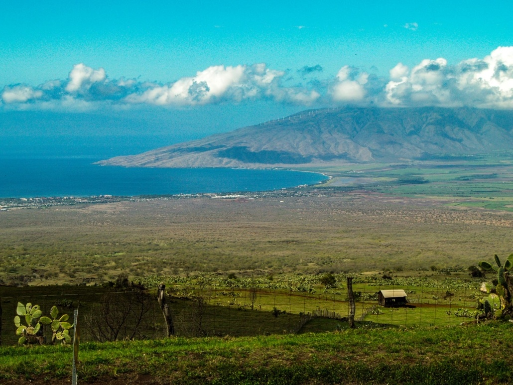 Upcountry View of Maalaea Bay