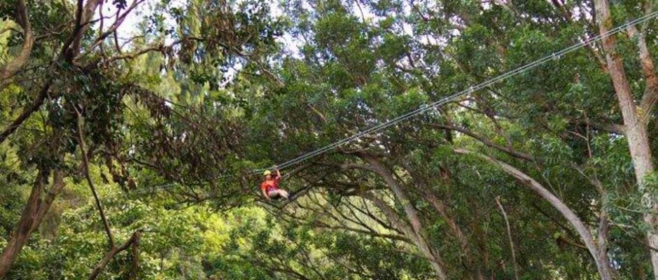 Ziplining in North Kohala