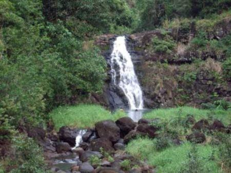 Small waterfall in Hawaii