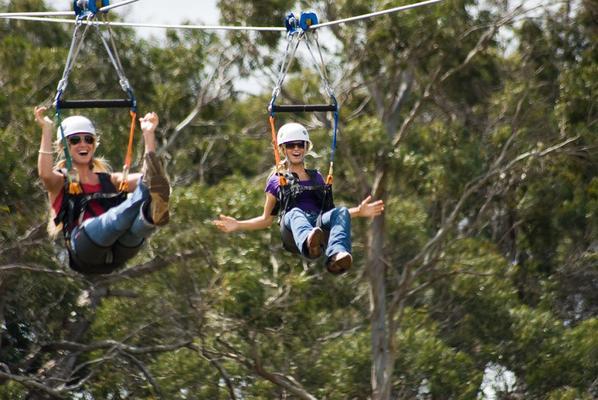 Piiholo Tree-Top Zipline Adventure