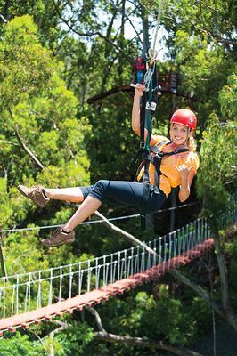 Piiholo Canopy Zipline Maui