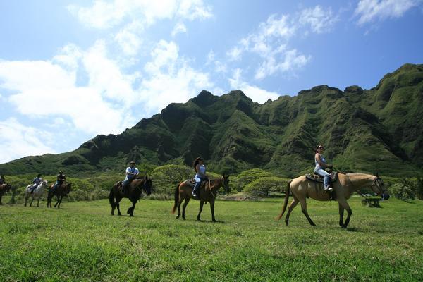 Horses Adventure Island