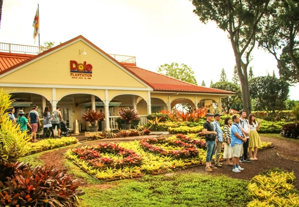 Dole Plantation Entrance Group Photo Visitors Oahu