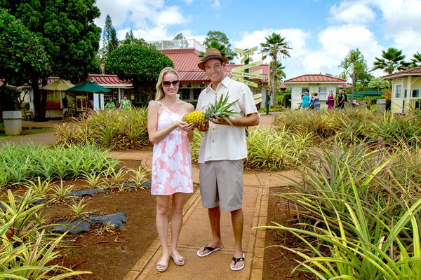 Dole Pineapple Plantation Visitor Couple with Pineapple Oahu