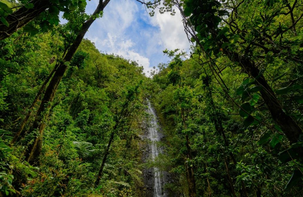 Monoa Jurassic Park Waterfall