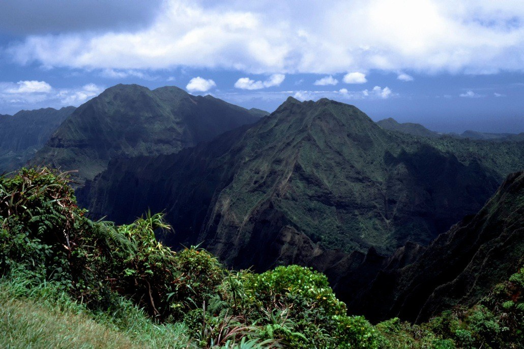 Oahu Mountains Trail
