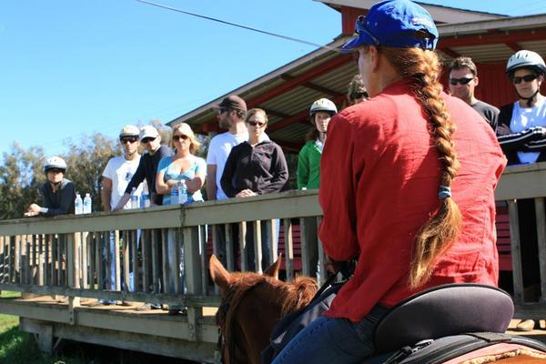 Horseback Riding Instruction Visitors