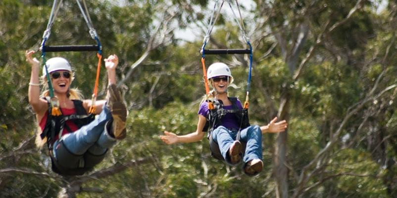 Zipline Piiholo adventure Maui Hawaii