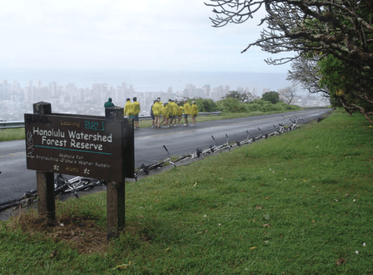 Bike Hawaii Bikers In Rain at Honolulu watershed forest reserve