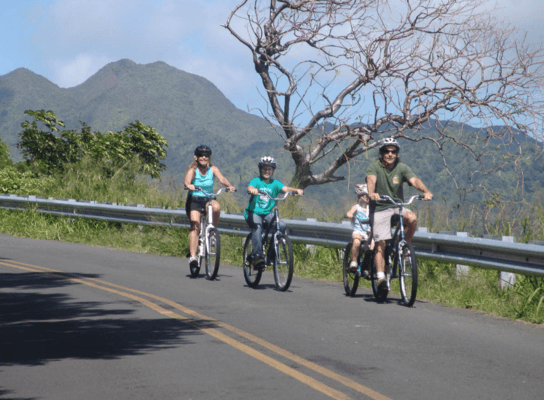 Bike Hawaii Down Hill Bike Family