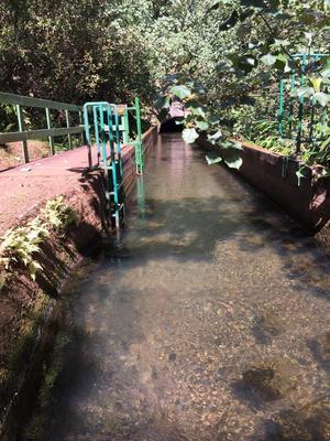 Mountain Tubing Canal