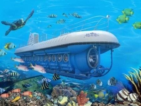 Atlantis Submarine Ocean Discovery Dive Tour