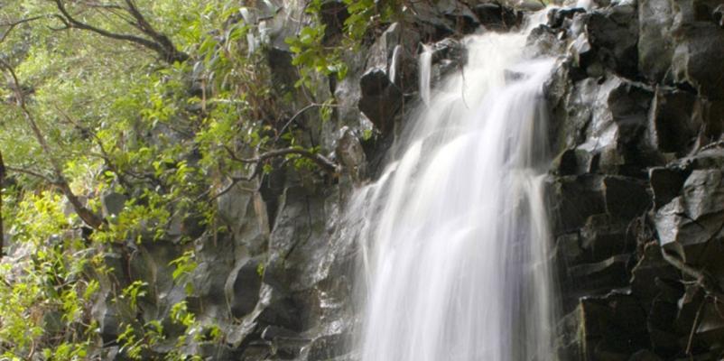Kayak, Snorkel, Waterfalls Hike Combo