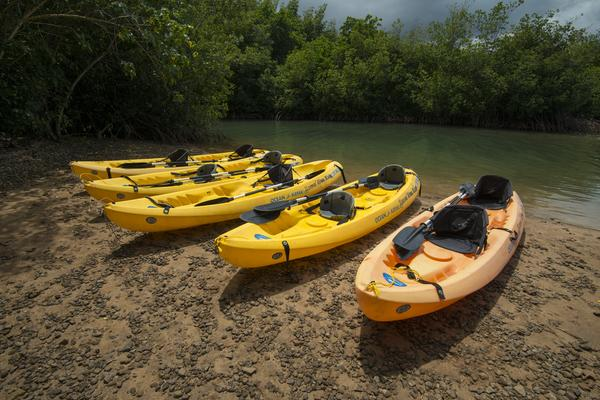 No categories	Self-Guided Kayak and Snorkel Discovery