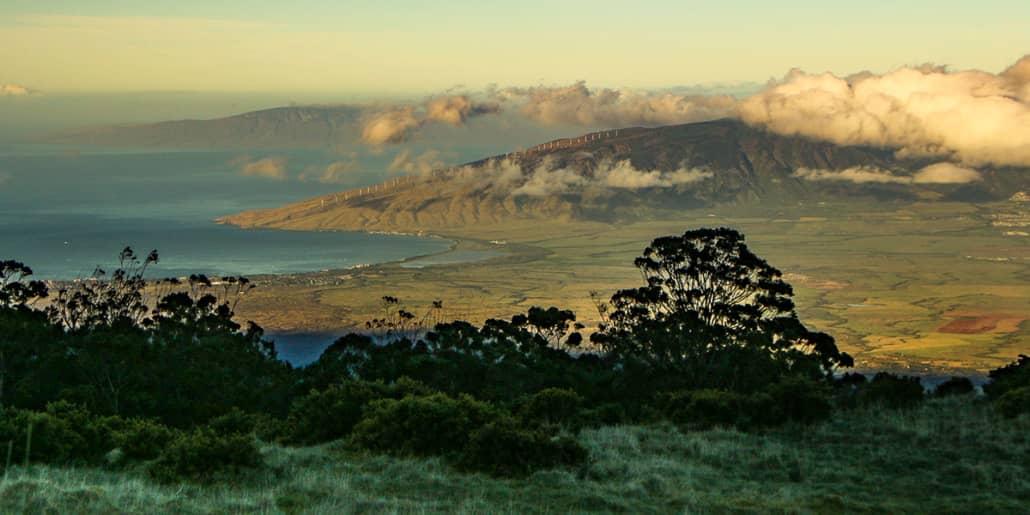 Haleakala Crater Road Sunrise Trees