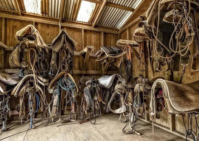 Horses Tack Room Hawaii