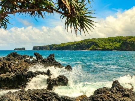 Keanae Peninsula Hala Tree and Waves