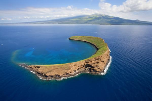 Molokini & Turtle Reef Morning Snorkel