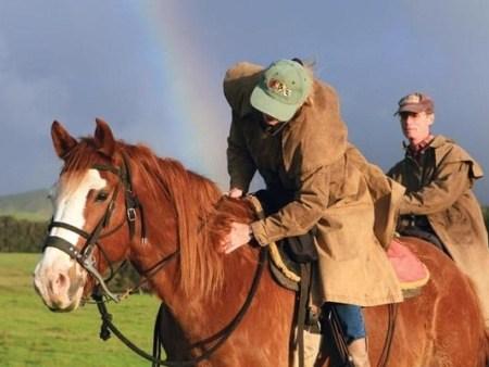 Wrangler Horseback Ride