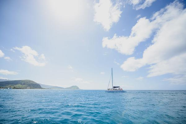Turtle Guaranteed Snorkel Sail