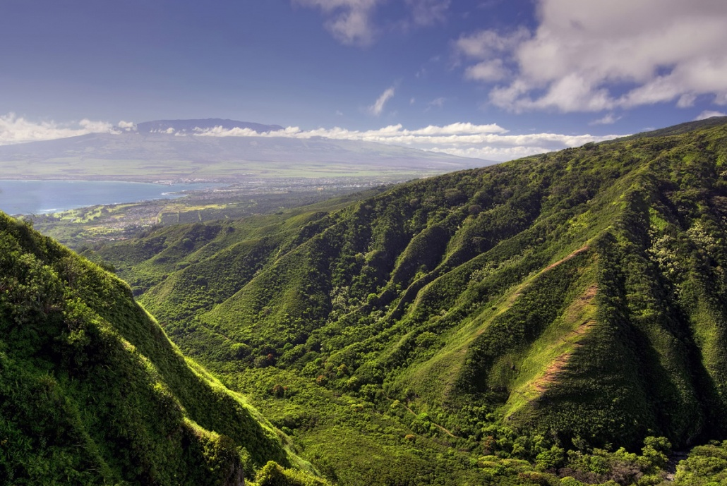 Tropical Rainforest View West Maui And Molokai Helicopter Tour