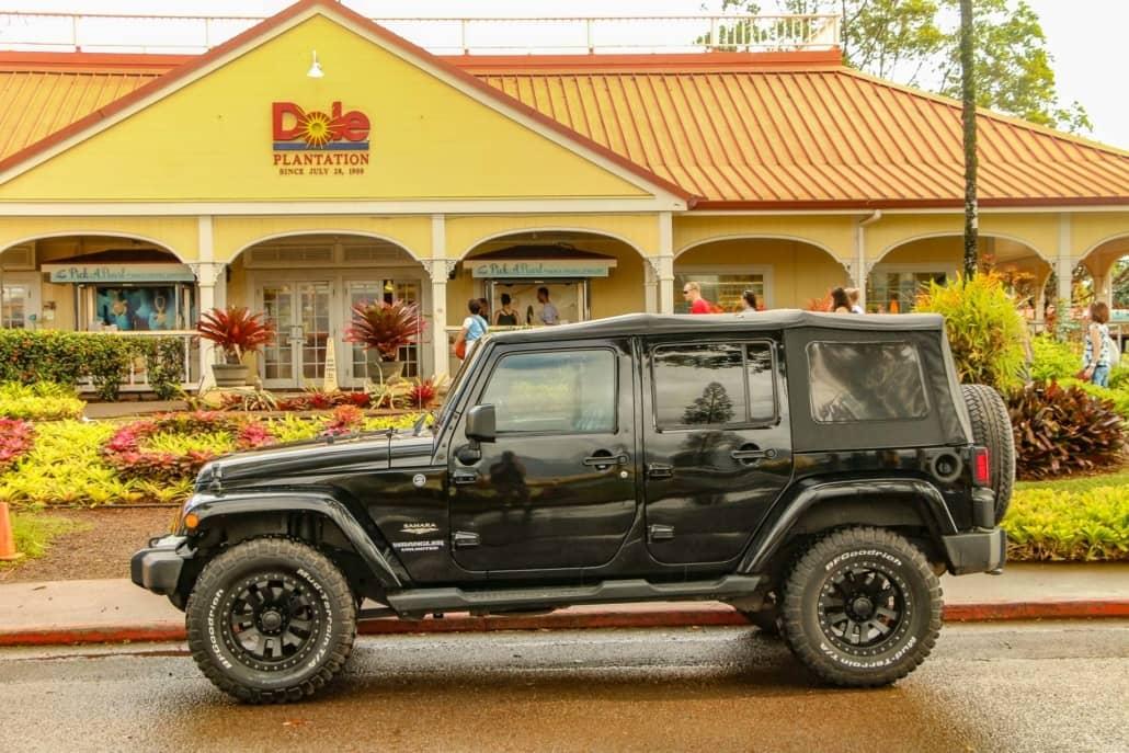 private jeep tour dole plantation