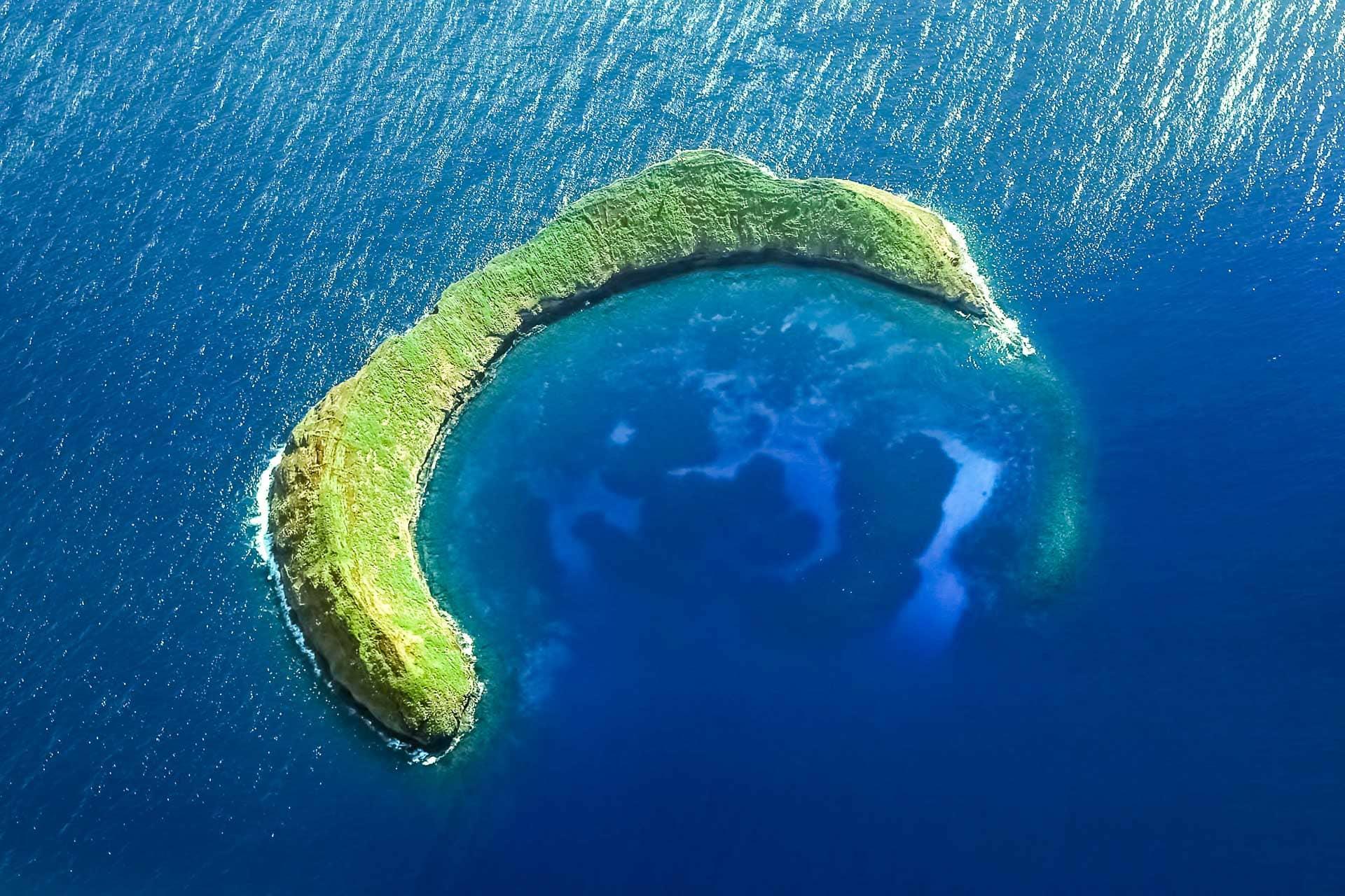 Molokini Snorkeling Tour   Turtle Town Tour   Maui Activities