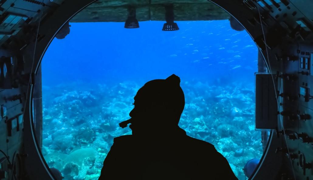 Submarine Tour Underwater Reef shutterstock