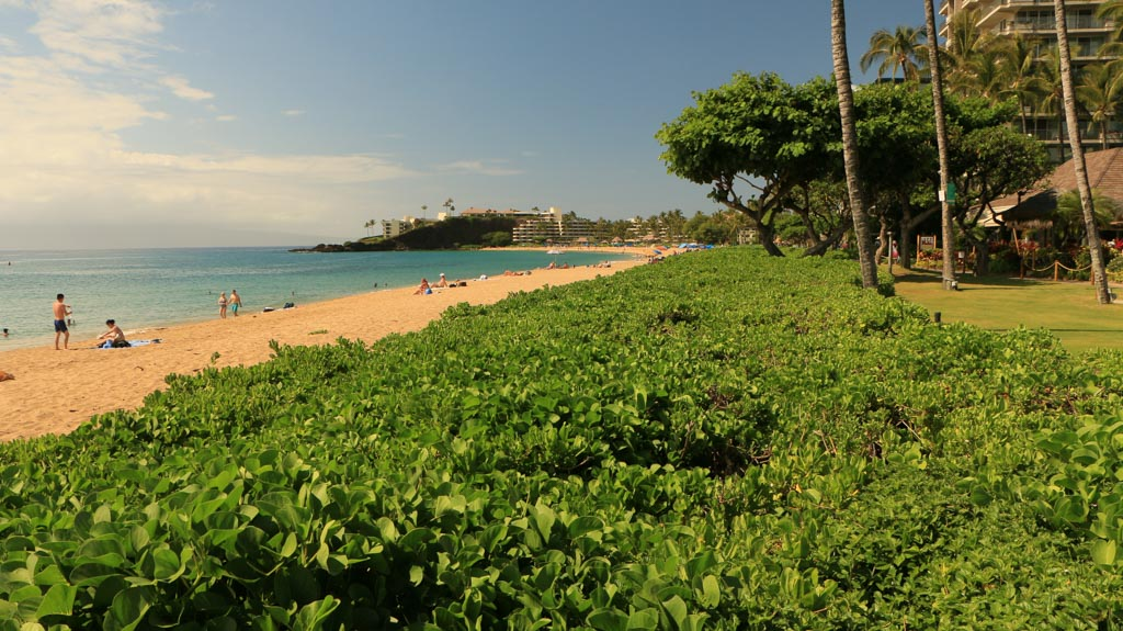 West Maui Beaches