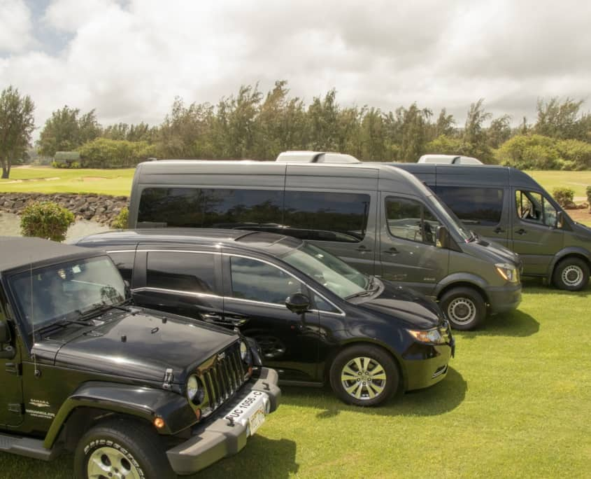 Hawaii Tours Fleet