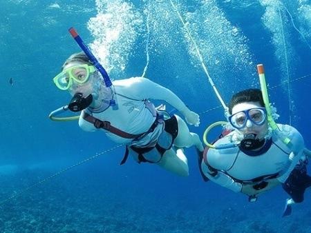 Pride of Maui Snorkelers