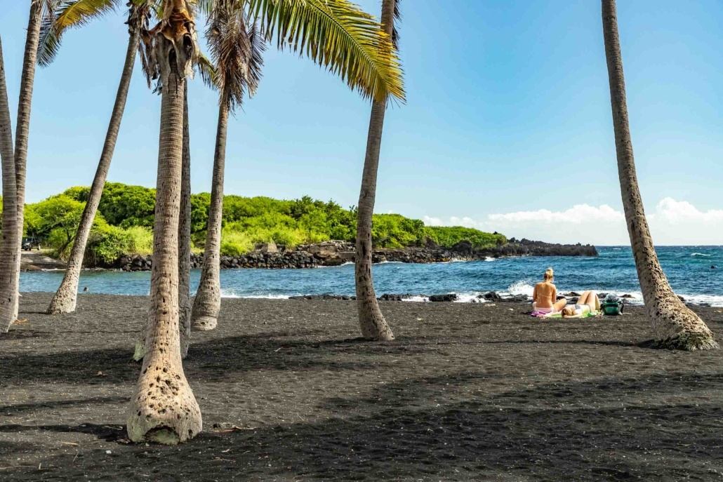 Punalu'u Black Sand Beach and Coconut Trees Big Island