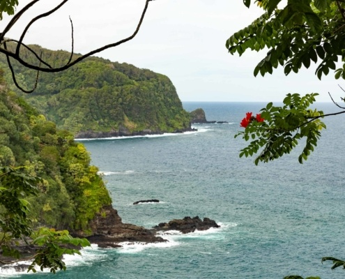 Road to Hana Cliff Views and flowers Maui