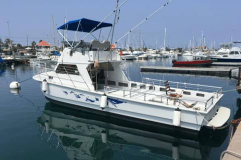 Mid Sized Boats of Bite Me Big Island Sportfishing