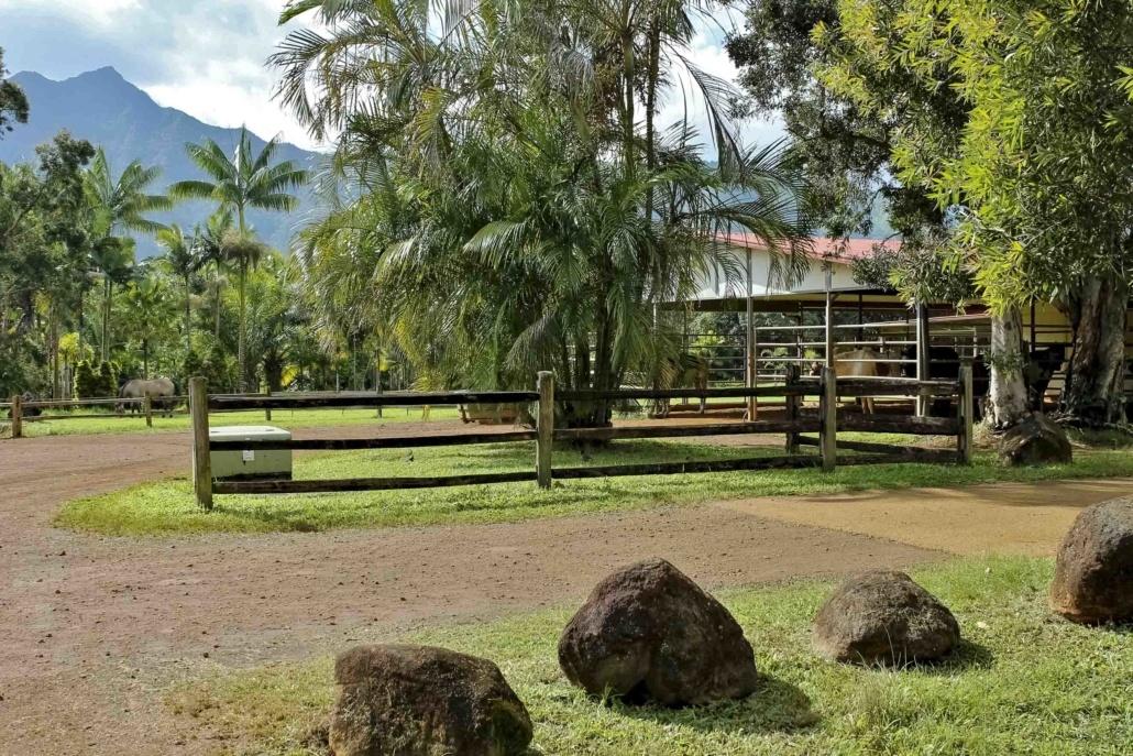Silver Falls Ranch Horse Stables Kauai