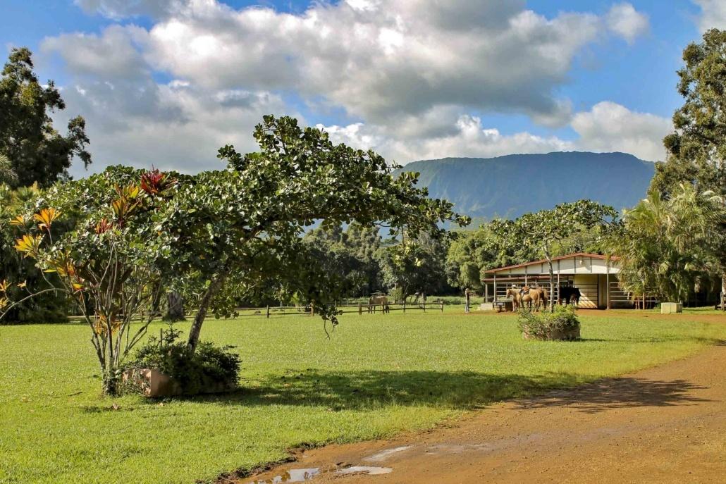 Silver Falls Ranch Horseback Stables Kauai