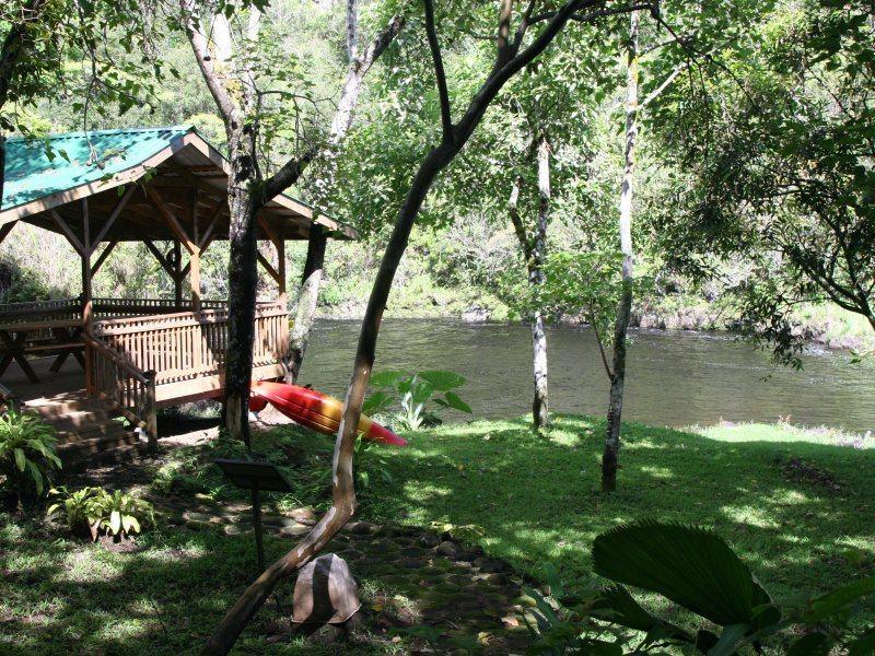 Picnic & Private River Swim