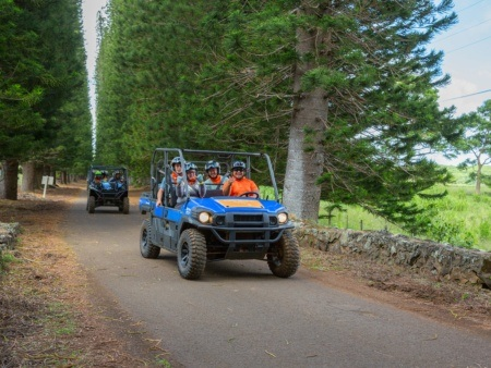 Drive As Groups At Kipu Ranch Tours Kipu Tours Kauai