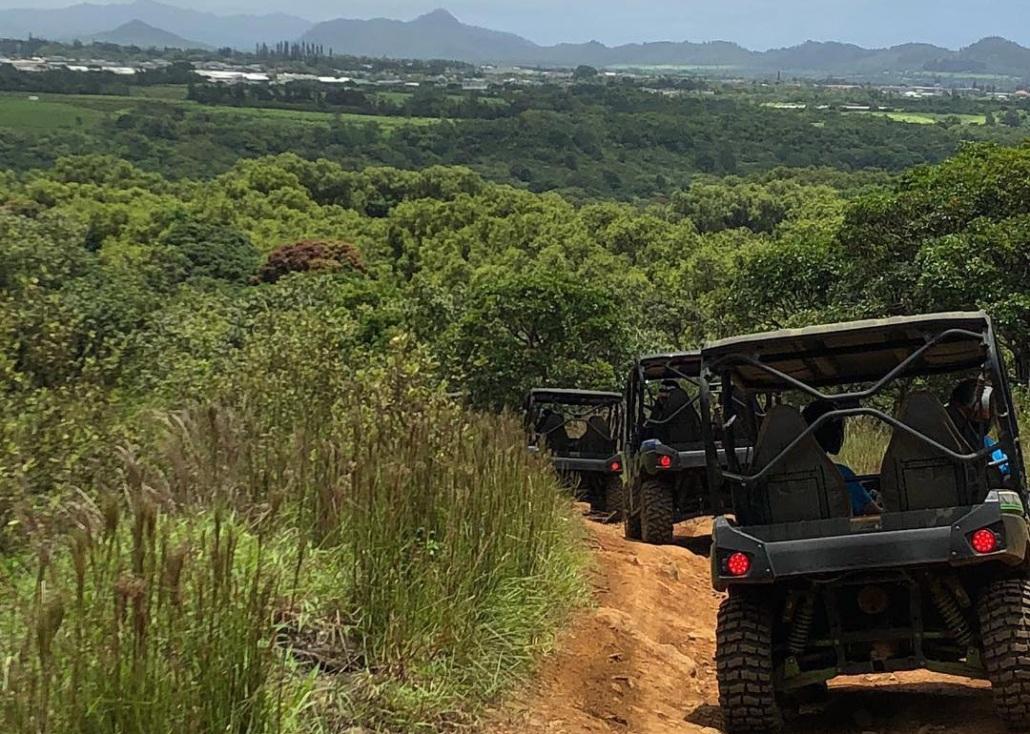 Head Into The Jungle Kauai Kipu Tours