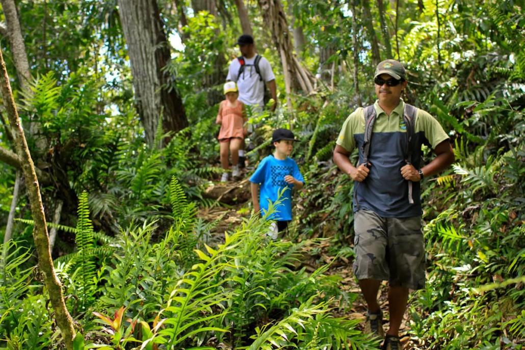 Kalihiwai Fall Hike Princeville Ranch Kauai