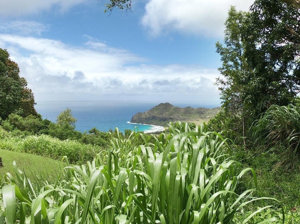 Kauai Beach Kipu Tours