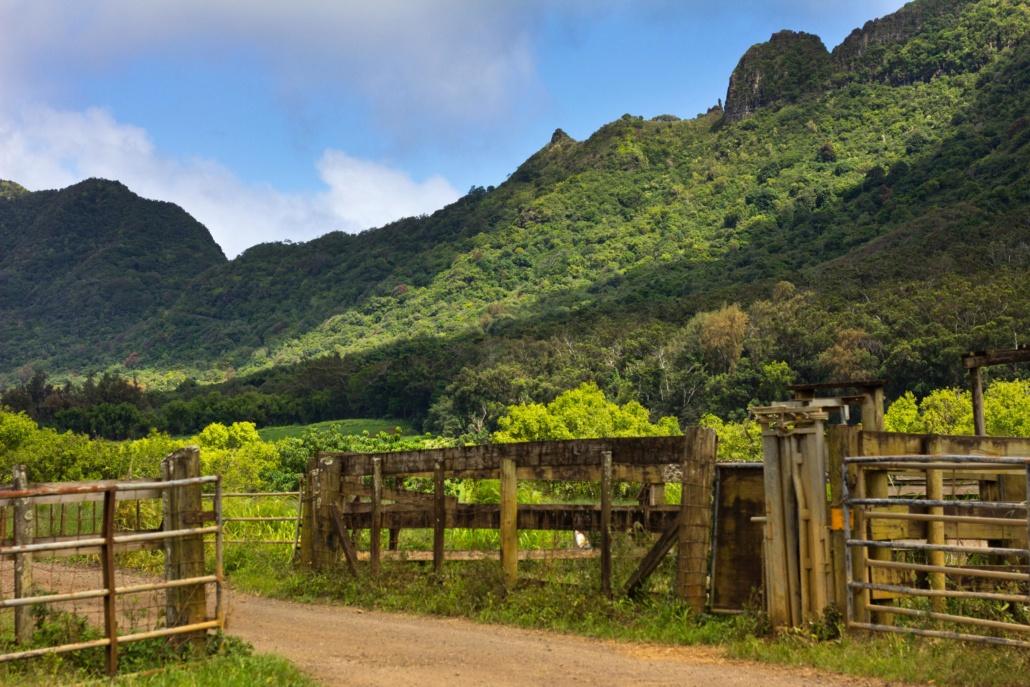 Kipu Ranch Kipu Tours Kauai