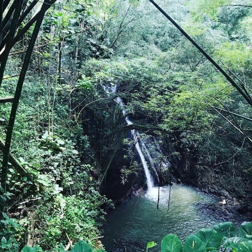 Private Waterfalls Kauai Kipu Tours