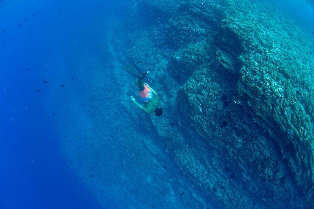 Snorkeling In Holo Holo Charters Kauai