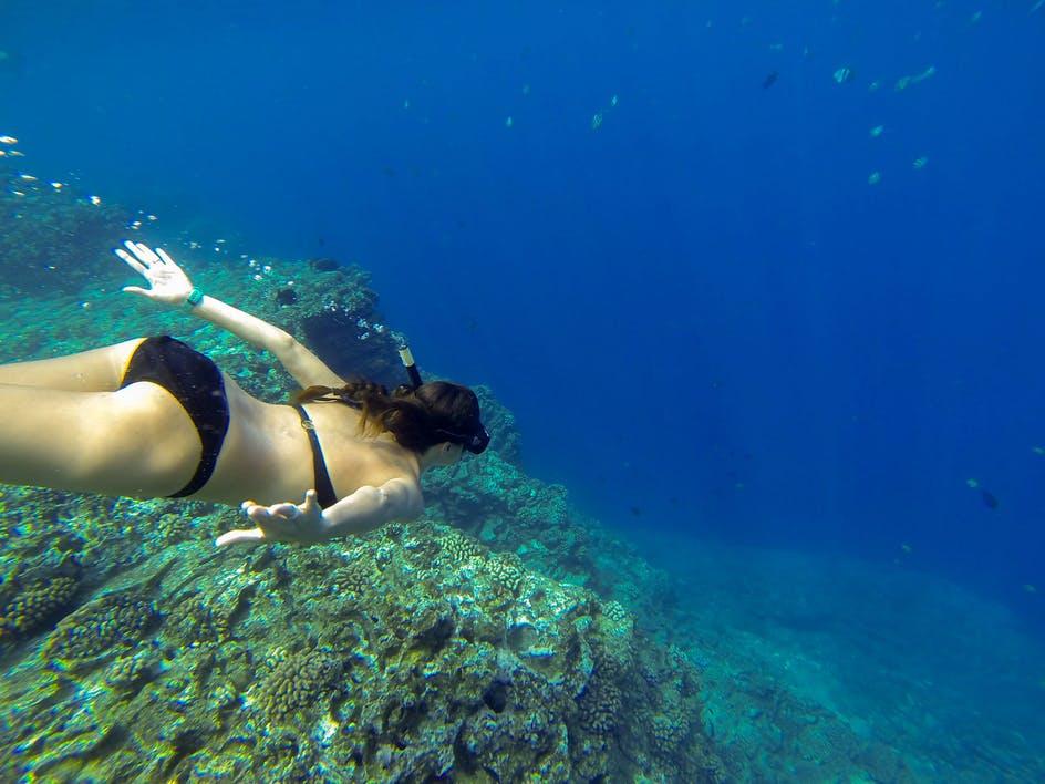 Snorkeling Niihau In Holo Holo Charters Kauai