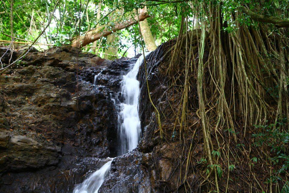 Waterfall Picnic Tour Kauai Kipu Tours